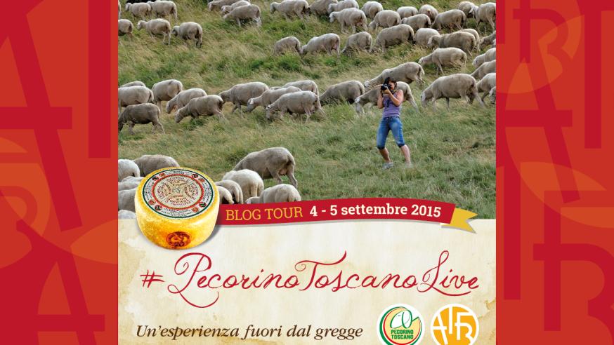 Banner-Pecorino-Toscano-DOP-874x492