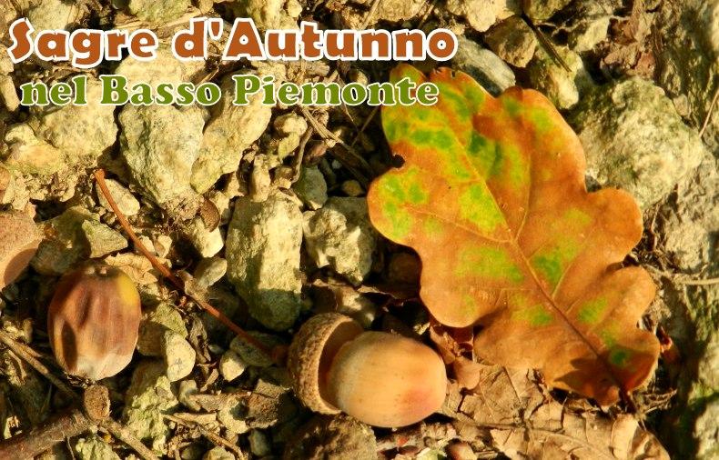 Sagre d'Autunno nel Basso Piemonte