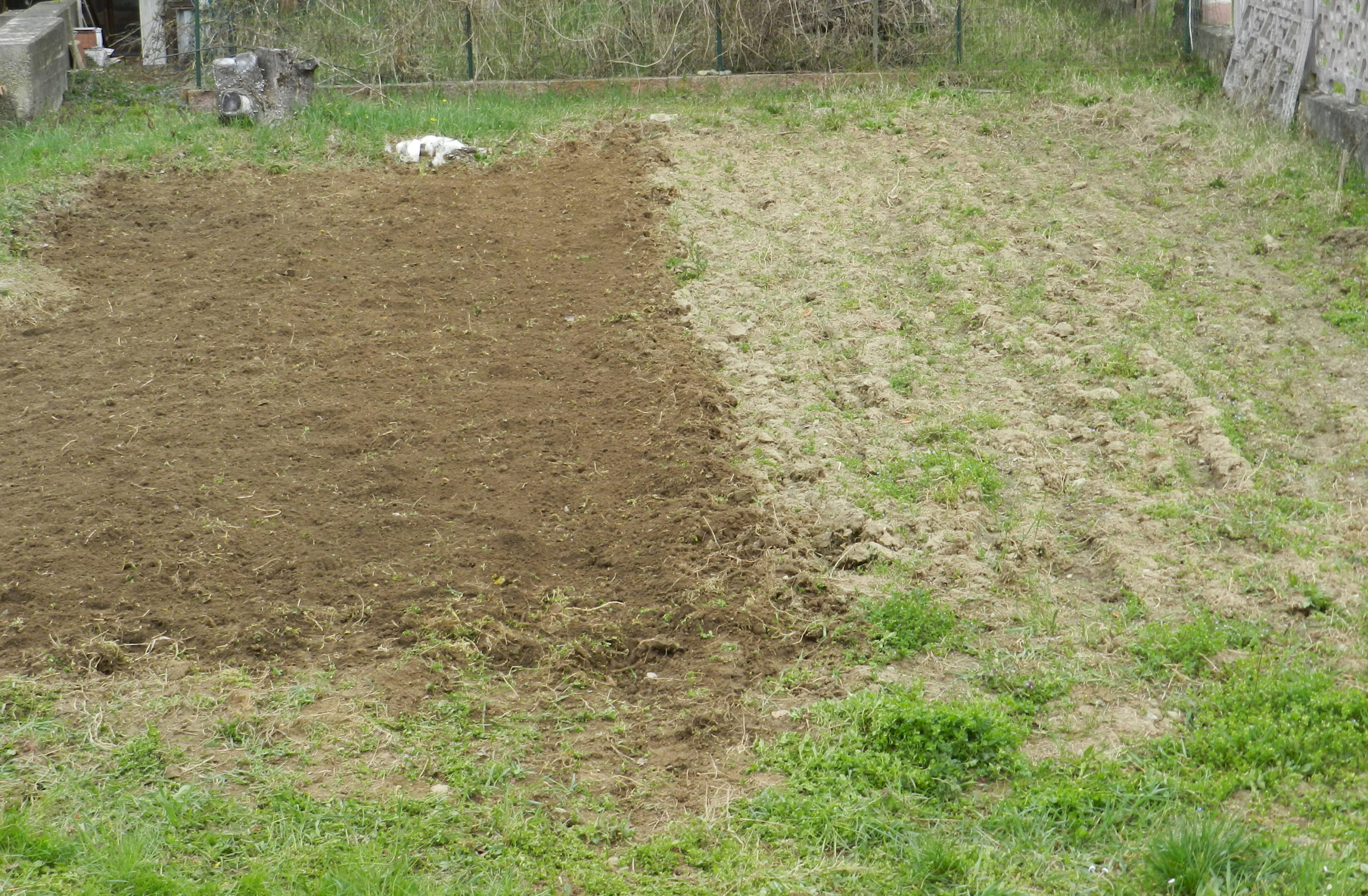 L'ORTO AL NATURALE 1: Il nostro orto a km 0