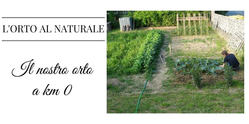 Il nostro orto a km 0: L'ORTO AL NATURALE