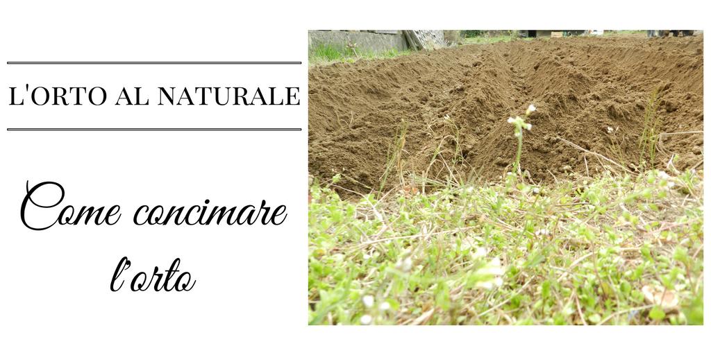 Come concimare l'orto: L'ORTO AL NATURALE
