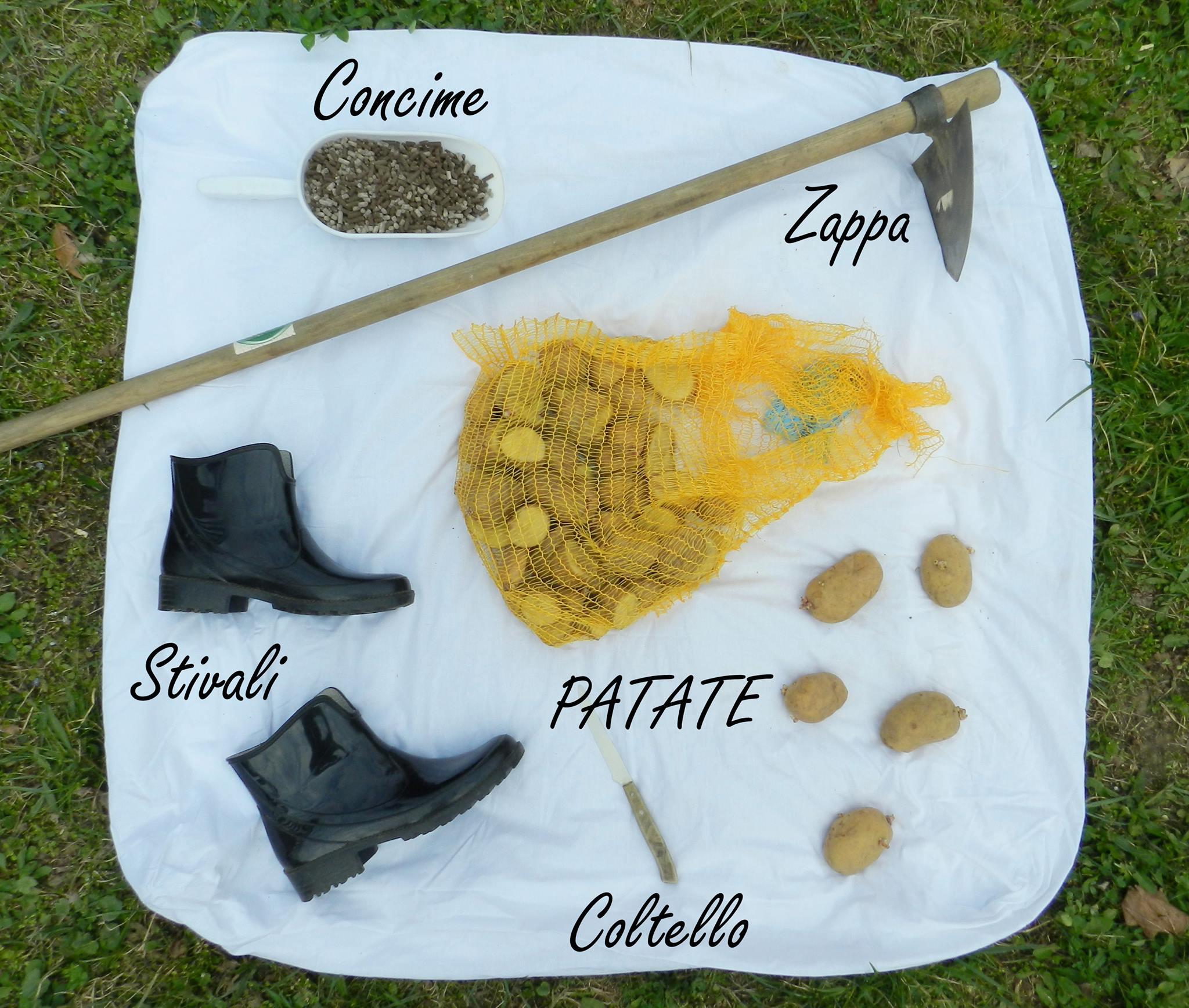 L'ORTO AL NATURALE 4: Come seminare le patate