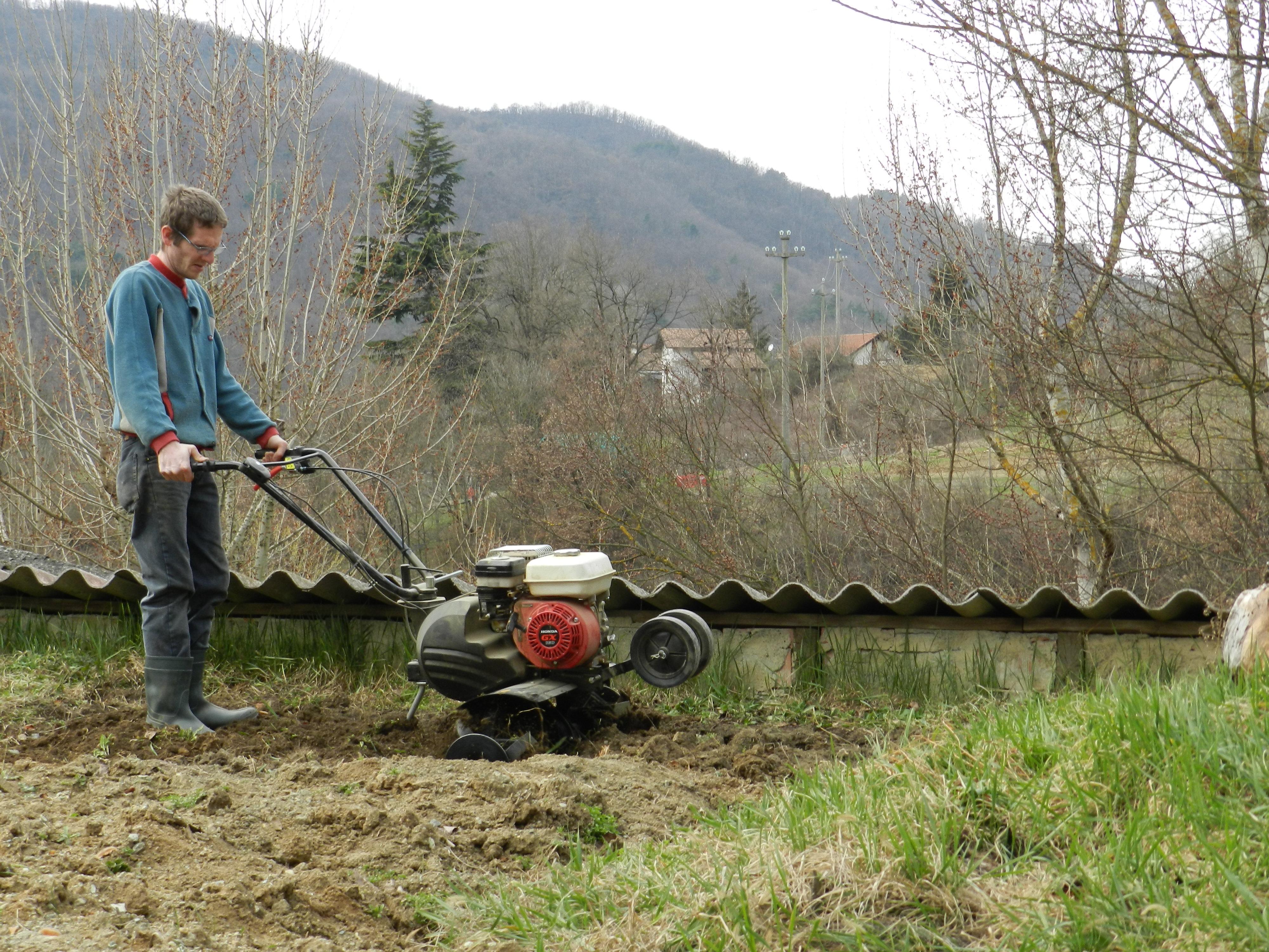 L'ORTO AL NATURALE 4: Come coltivare le fragole