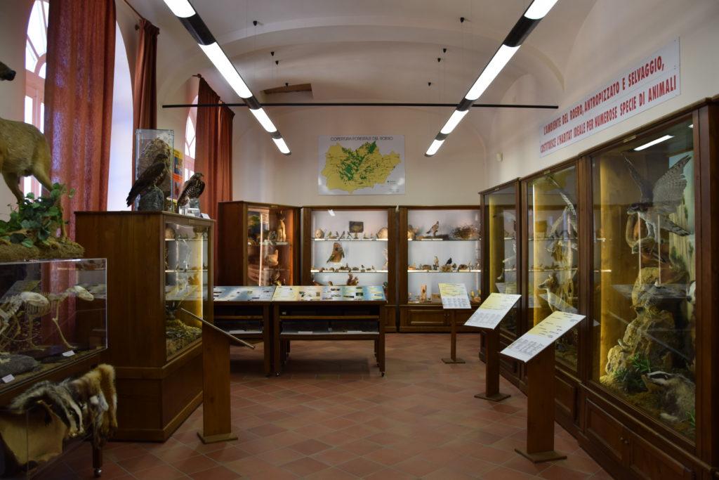TAPPA 1: VEZZA D'ALBA – Strada Romantica delle Langhe & del Roero Museo Naturalistico del Roero