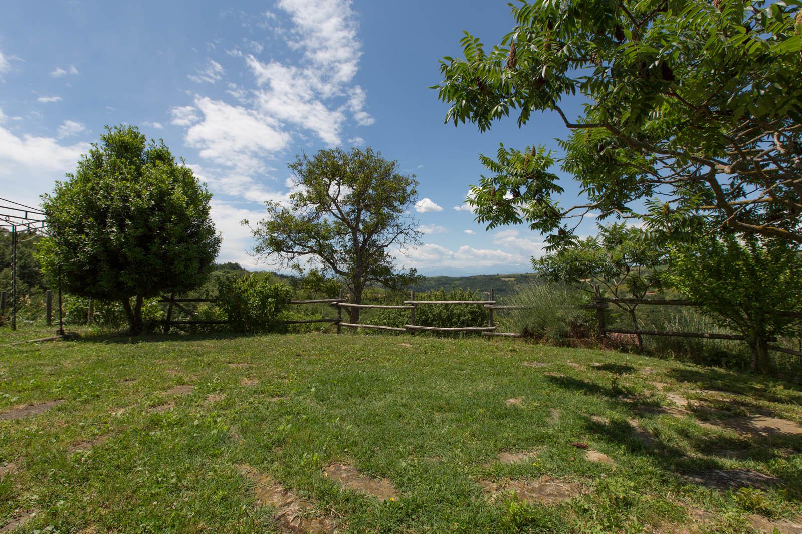 Agriturismo Abbadia Borgo del Sole - Marsaglia le erbe selvatiche spontanee commestibili