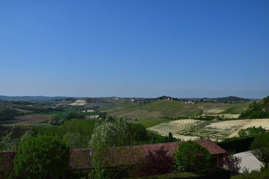 Giro del Nizza: un itinerario enogastronomico nel Monferrato