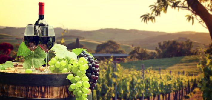 Itinerario Gourmet LA STRADA DEL VINO Seconda Edizione Monile Viaggi - Novi Ligure