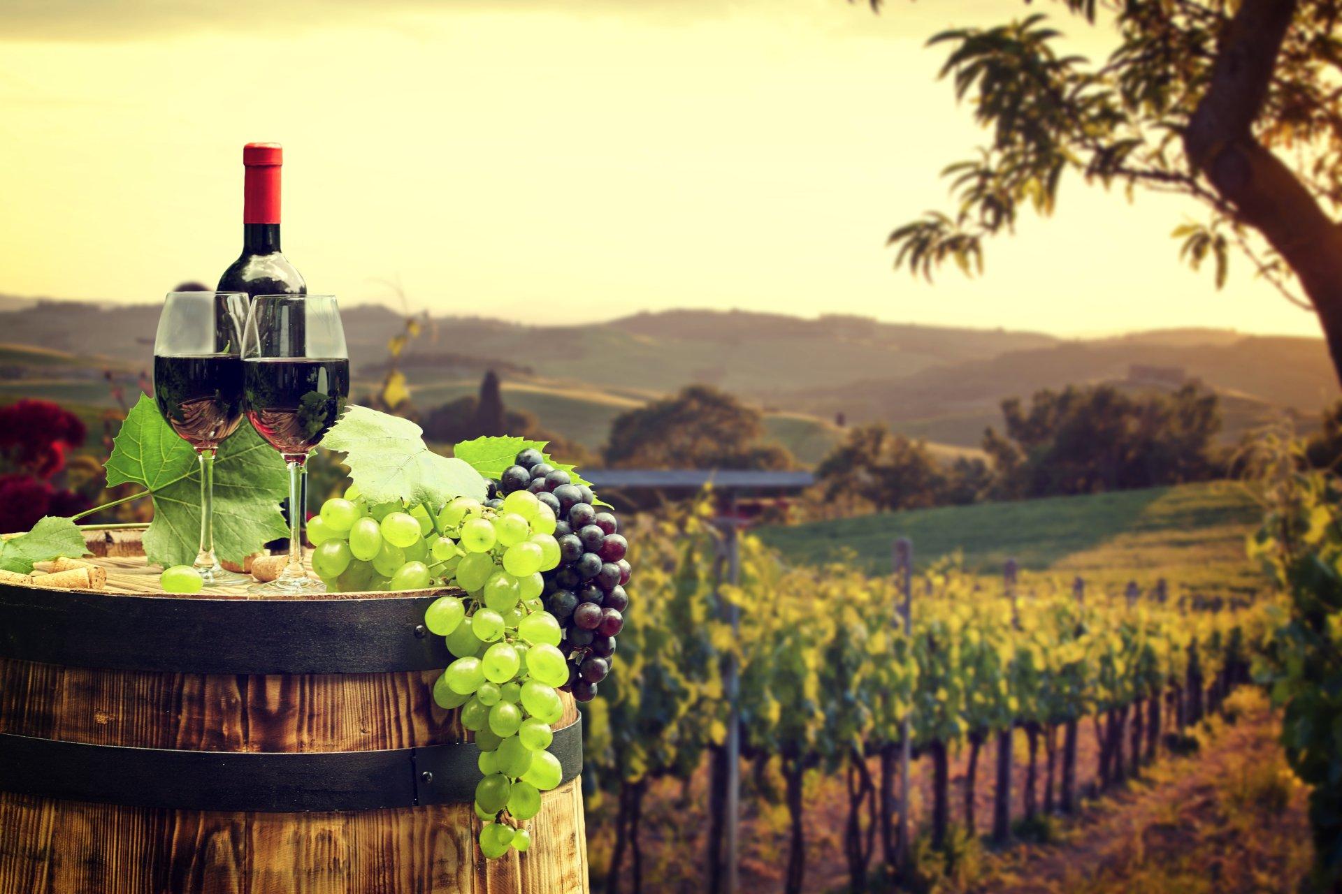 """Itinerario Gourmet """"LA STRADA DEL VINO"""" Seconda Edizione: Monile Viaggi – Novi Ligure"""