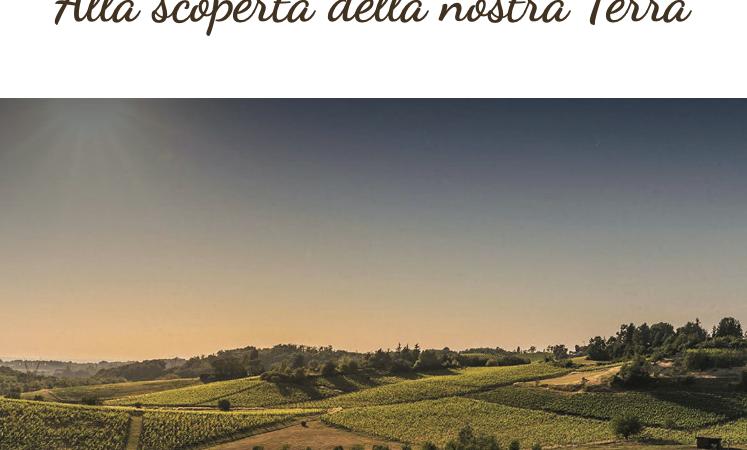 """Alla scoperta della nostra Terra: Il Monferrato – Blog Tour di """"Monile Viaggi"""""""